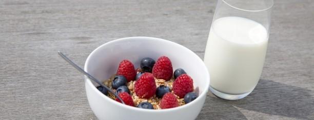 Was noch essen? Tipps für gesunde Ernährung